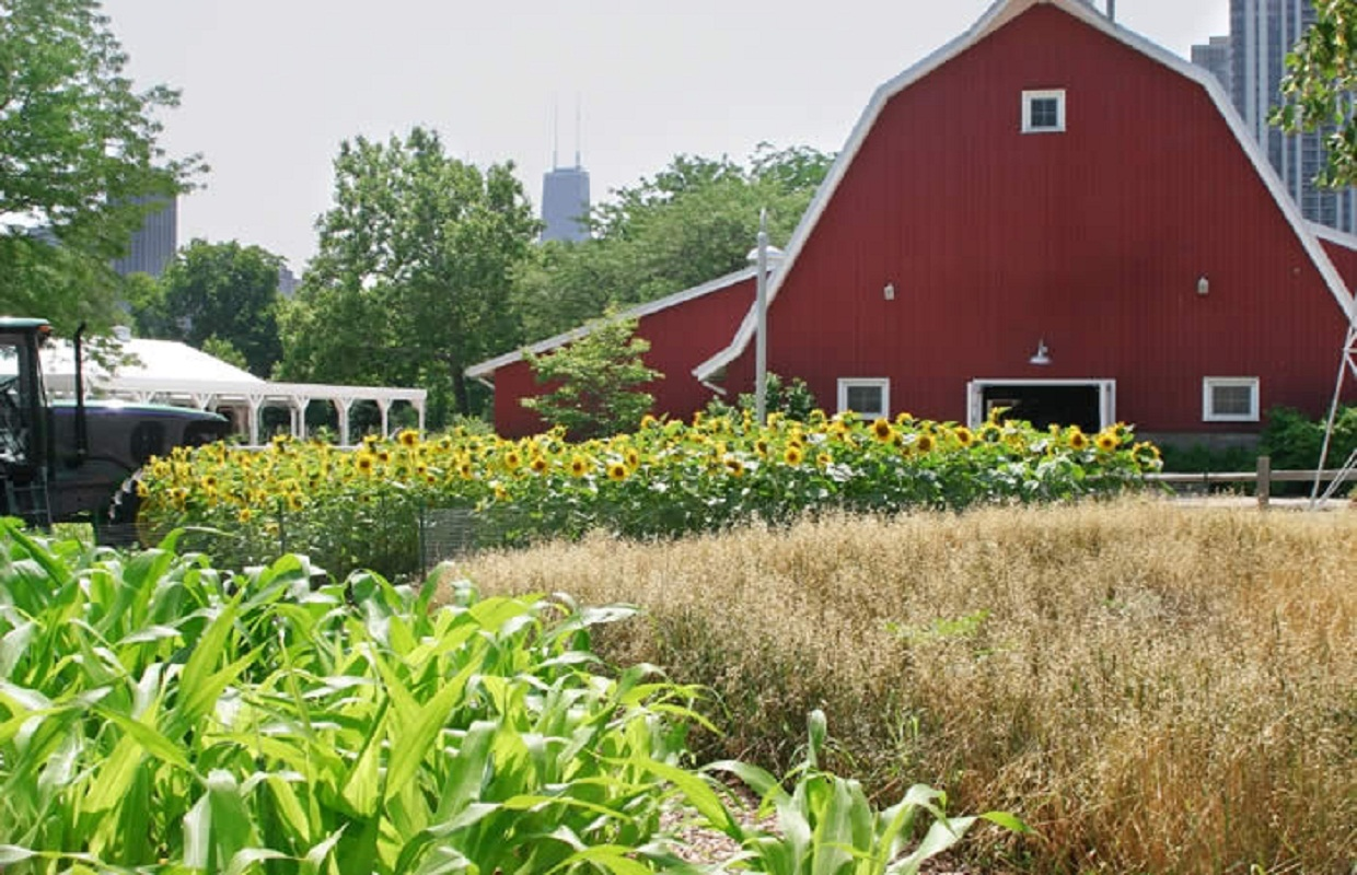 Wet Spring Could Hike Produce Costs